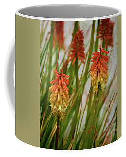 Torch Lily At The Beach Coffee Mug by Sandi OReilly