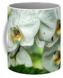 Toronto Orchids Coffee Mug