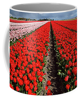 Tot Far Away Red Tulips Field Coffee Mug by Mihaela Pater