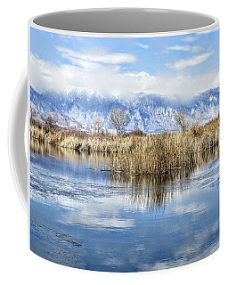 Total Reflection Coffee Mug
