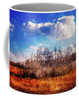 Coffee Mug featuring the photograph Touch Of Autumn In The Glades by Debra and Dave Vanderlaan