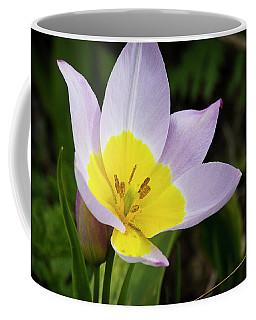 Touch Of Yellow Coffee Mug