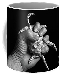 Touch Series - Shells Coffee Mug