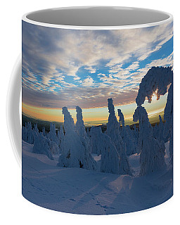 Touched From The Winter Sun Coffee Mug by Andreas Levi