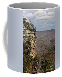 Touching The Sky Coffee Mug by Debbie Green