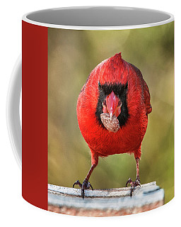Tough Guy Cardinal Coffee Mug by Jim Moore