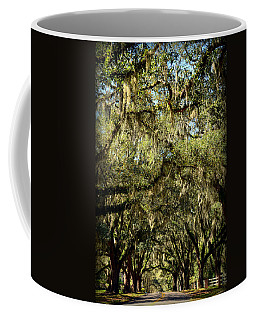 Towering Canopy Coffee Mug by Carla Parris