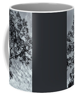Coffee Mug featuring the photograph Towering by Linda Lees