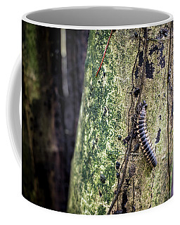 Tractor Millipede Coffee Mug