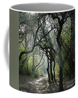 Trail Of Light Coffee Mug