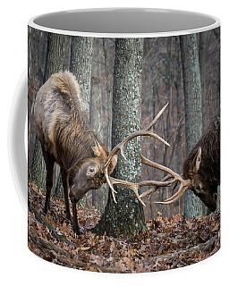 Training 101 Coffee Mug
