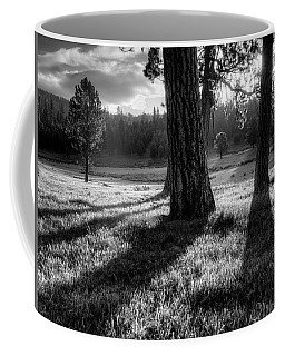 Tranquil Black And White 12 Coffee Mug