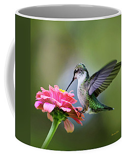 Tranquil Joy Hummingbird Square Coffee Mug