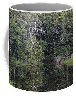 Coffee Mug featuring the photograph Tranquility by Sheila Brown