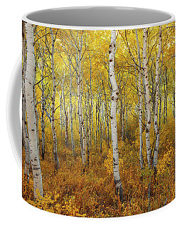 Coffee Mug featuring the photograph Transition by Dustin  LeFevre