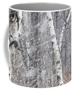 Transition, Spring Squall 3 - Coffee Mug