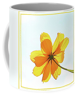 Coffee Mug featuring the photograph Translucent Flower by Ellen O'Reilly