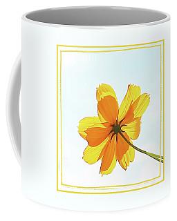 Coffee Mug featuring the photograph Translucent Flower by Ellen Barron O'Reilly