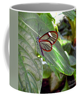 Transparency Coffee Mug