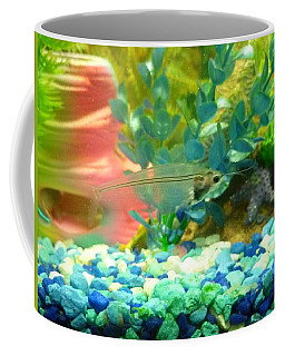 Coffee Mug featuring the photograph Transparent Catfish by Barbara Yearty