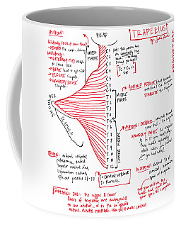 Trapezius Coffee Mug