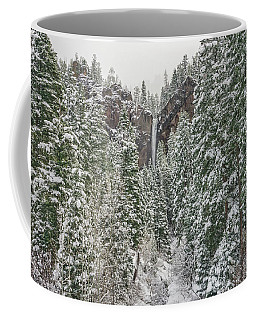 Treasure Falls Is One Of Colorado's Priceless Treasures.  Coffee Mug