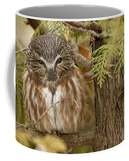 Coffee Mug featuring the photograph Treasures Of The Forest by Everet Regal