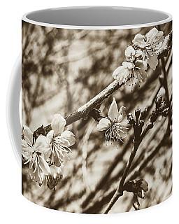 Coffee Mug featuring the photograph Tree Blossom A by Jacek Wojnarowski