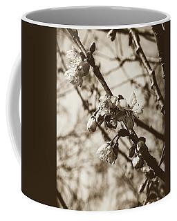 Coffee Mug featuring the photograph Tree Blossom B by Jacek Wojnarowski
