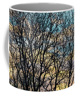 Coffee Mug featuring the photograph Tree Branches And Colorful Clouds by James BO Insogna