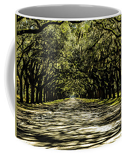 Tree Covered Approach Coffee Mug