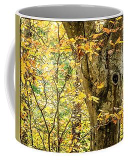 Tree Hollow Coffee Mug