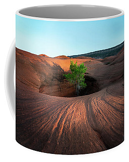 Coffee Mug featuring the photograph Tree In Desert Pothole by James Udall