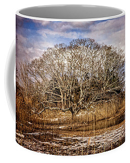 Tree In Marsh Coffee Mug