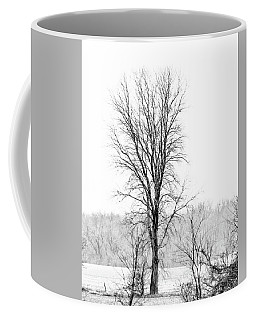 Coffee Mug featuring the photograph Tree In The Fog by Jay Stockhaus