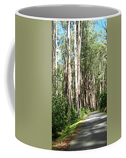 Tree Lined Mountain Road Coffee Mug