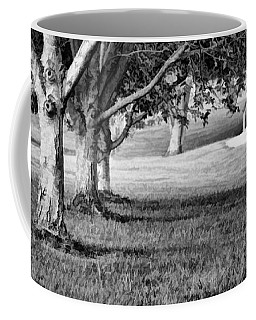 Tree-lined Path To Footbridge - B/w Coffee Mug