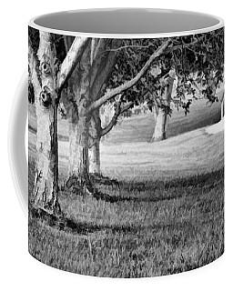 Tree-lined Path To Footbridge - B/w Coffee Mug by Greg Jackson