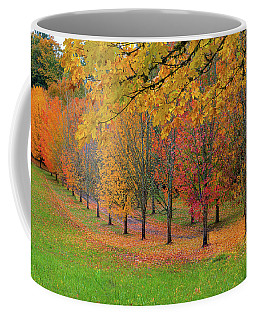 Tree Lined Path With Fall Foliage Coffee Mug