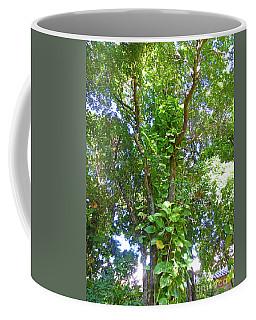 Tree M1 Coffee Mug