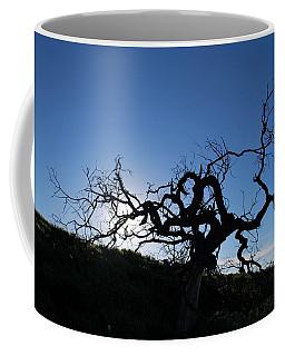 Coffee Mug featuring the photograph Tree Of Light Silhouette Hillside by Matt Harang