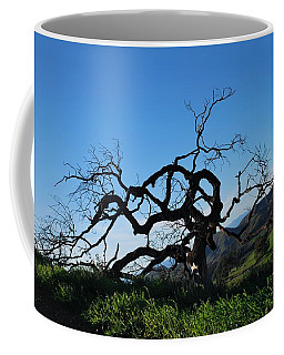 Coffee Mug featuring the photograph Tree Of Light - Slanted Horizon by Matt Harang