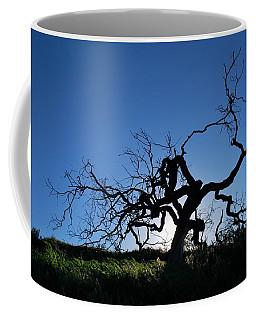 Coffee Mug featuring the photograph Tree Of Light - Straight View 2 by Matt Harang