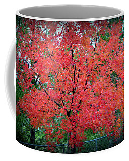 Coffee Mug featuring the photograph Tree On Fire by AJ Schibig