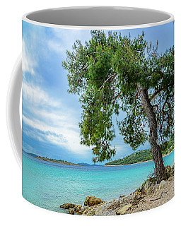 Tree On Northern Dalmatian Coast Beach, Croatia Coffee Mug