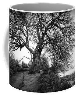 Tree On Ridge - Black And White Coffee Mug