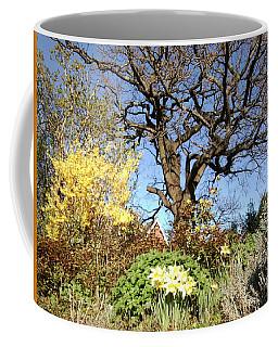 Tree Photo 991 Coffee Mug