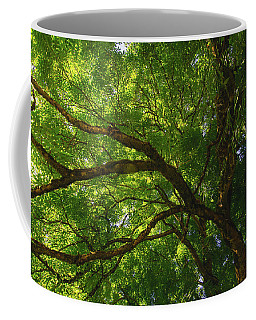 Tree Story 3 Coffee Mug