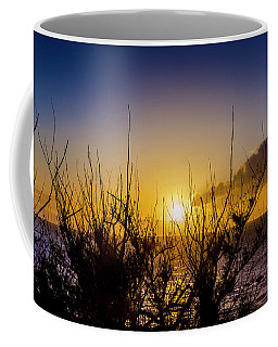 Tree Sunset Coffee Mug