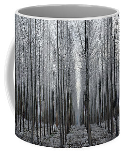 Tree Symmetry Coffee Mug